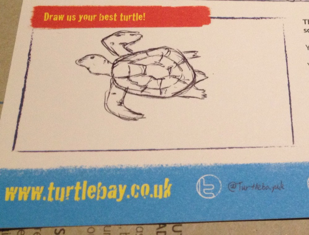 Turtle Bay - Feedback card