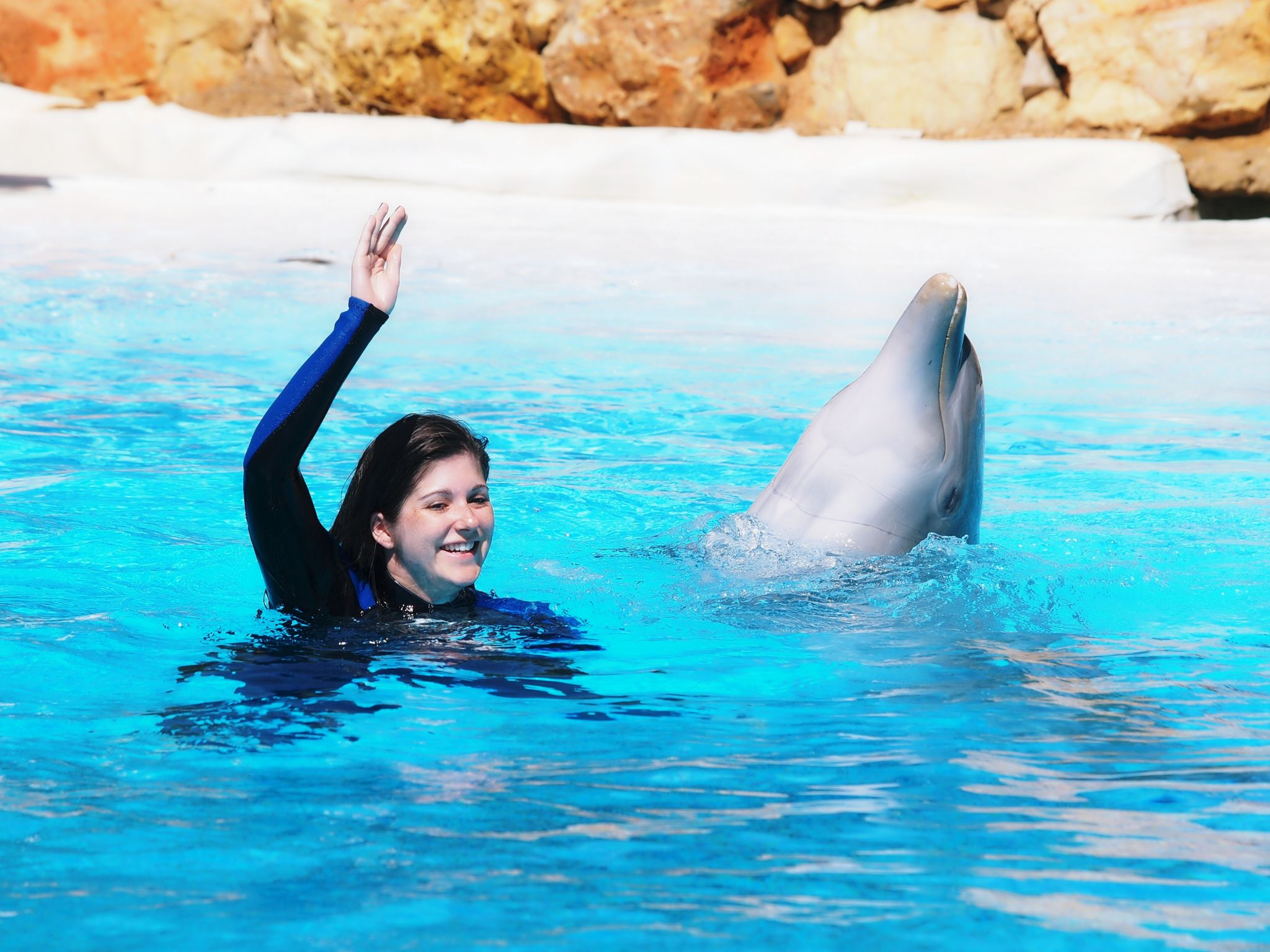 Swimming with Dolphins, Portugal, Thomson Holidays
