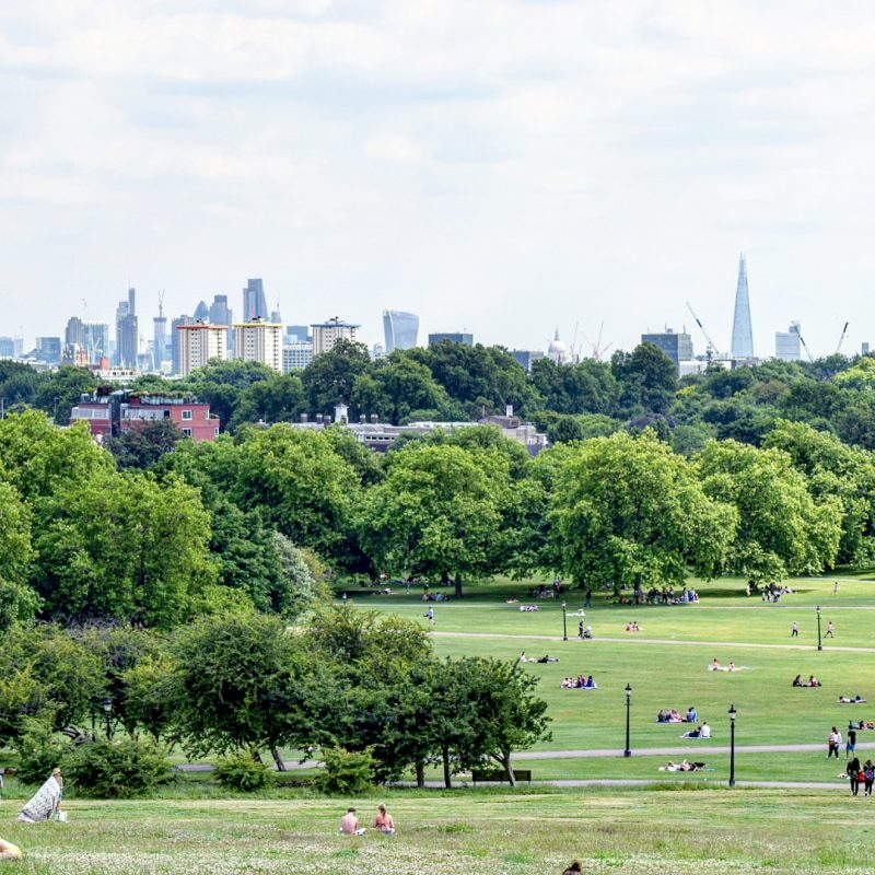 Primrose Hill, picnic spot London